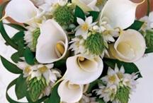 Wedding ideas / by Annmarie Dreyer