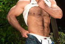 Hairy / Beard