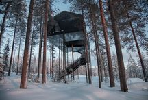 Architectures / The 7th room A wonderful tree house Sweden, Harads https://snohetta.prezly.com/the-7th-room