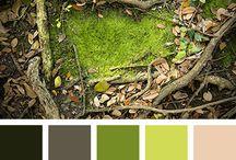 Color Palette/палитра/Цвет
