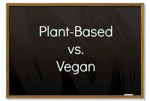 Plant-Based Recipes / Best plant-based recipes