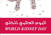 Healthy Kidneys for a Happy Life. Are you at risk? / Healthy Kidneys for a Happy Life. Are you at risk?