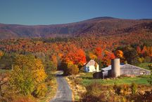 North America Fall Foliage / Travel season doesn't end after summer. Fall into autumn with a trip to New England to see the best fall foliage! From bike rides to cruises, we have a variety of scenic tours to see fall's finest. / by Viator.com