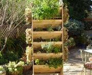 Organic Gardening / by Jestelle Dawson
