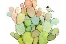 cactus &succulent