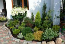 kert otletek