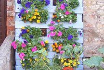 Pallet Garden / DIY pallet vertical garden ideas and different wooden pallets garden furniture designs for your home.
