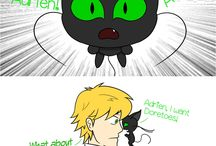 chat noir/black cat/karakedi