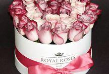 Rózsák