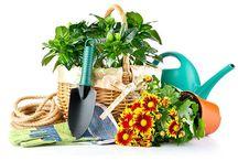 Kış Bahçesi / Kış bahçenizi veya kapalı cam balkonunuzu Beğendik'in bahçe reyonlarındaki bitki ve süslerle renklendirebilirsiniz. #beğendik #kışbahçesi