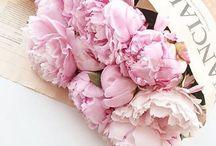Floral fairytale wonderland