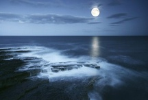 Moonlit night / Moonlit night