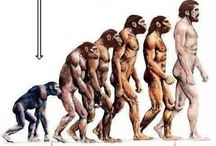 evolution atheism