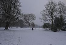 London Snow / Our favourite London Park blanketed in snow...