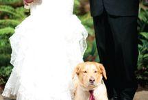 Wedding ideas / by Jamey Bond