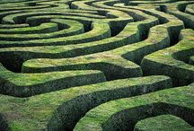 """Labyrinth // Maze / """"Just as treasures are uncovered from the earth, so virtue appears from good deeds, and wisdom appears from a pure and peaceful mind. To walk safely through the maze of human life, one needs the light of wisdom and the guidance of virtue."""" ~ Buddha  / by Vanessa Knijn"""