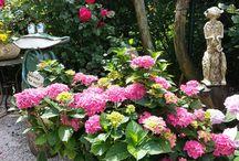 Gartenkeramik + Skulpturen / Niveauvolle Gartenkeramik + Skulpturen -alles frostsicher- von der Gartenkünstlerin aus Teisendorf. Alles zu kaufen.