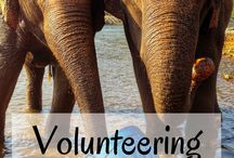 Voluntourism / Giving back while on vacation - what a great way to enjoy your holiday