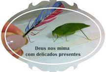 insights / www.emanuellascoz.com