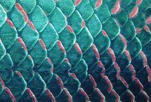 écailles de poissons