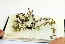 ○Libros , Craft ,Diseño Editorial / Editorial, pop up, diagramación etc