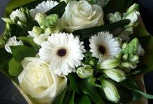 Seasons Mothers Day Collection / Collection of our Mothers Day Arrangements
