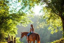 riding horses photography