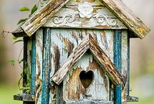 Project: Bird House