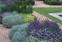 Διαμόρφωση κήπου