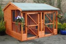 Dog kennels & chicken coups / by Gina Rodriguez