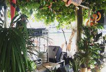+ Pop up store de la jungle