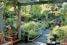 Garden Ideas / by Lena Doppel