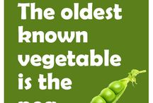 Fun food facts / Here's some new fun facts I learned I never new