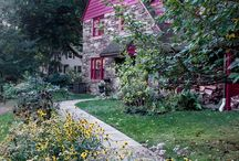 Rain Gardens / Capturing rainfall in your yard is good for your garden - and the environment