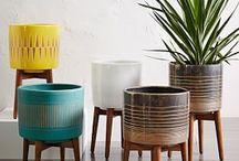 mid century modern pots