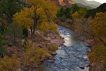 Zion National Park / Zion National Park  One of the nation's oldest national parks, Zion has a quiet grandeur that is unique. The 6-mile drive into the heart of verdant Zion Canyon brings visitors past such scenic wonders as The Great White Throne, The Watchman, Grotto Picnic Area, Angels Landing, Weeping Rock, the trail to Emerald Pools and the fantastic Gateway To The Narrows Trail. Park entrance fees.