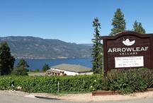 Kelowna Wine Trail / by Savour Mag