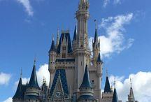 Travel   Florida   Disney World