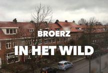 BroerZ in het wild [videodagboek] / Achter de schermen bij BroerZ.  / by BroerZ Verfilmt de kracht van uw onderneming....