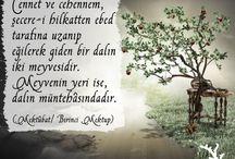 Risale / Risale-i Nur'lardan veciz sözler
