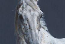 Horse ref