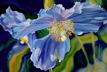 Art: Marney Ward, watercolorist