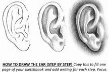 Pintura orelhas