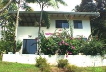 Beautiful Ocean View 2 BR Home with Casita / http://www.dominicalrealty.com/property/?id=4000
