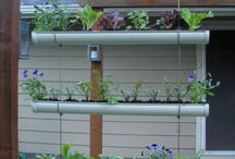 Gardening - fun ideas