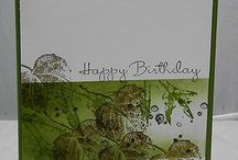 simple card  / by Stamp & Scrap with Frenchie