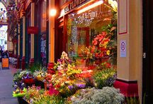 Kwiaciarnie,targi kwiatowe