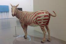 Art / Naked zebra
