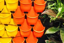 Home & Garden / All the latest and greatest in home decor, garden trends and products