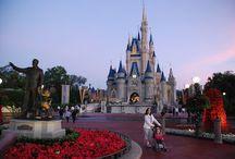 Disney Guides